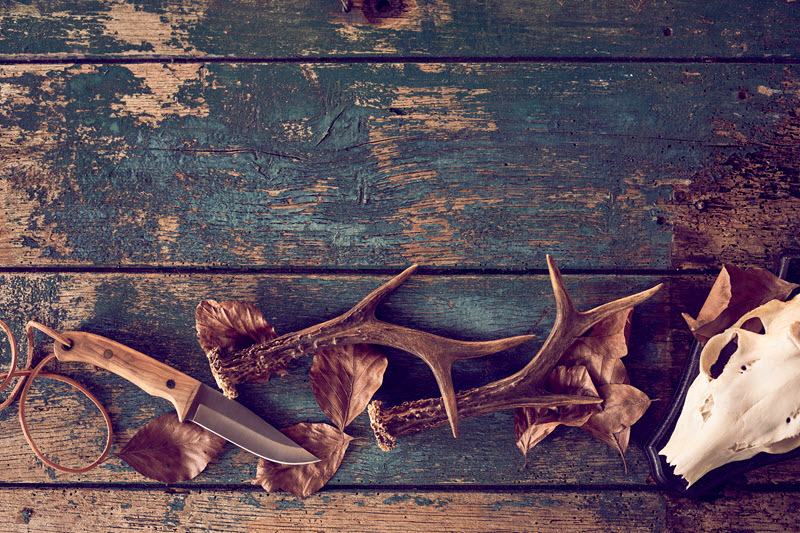 Broken stag antlers with fallen brown winter leaves and knife